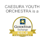guidestar-gold-award